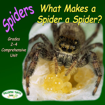 Spiders – What Makes a Spider a Spider (Nonfiction Science and Literacy Unit)