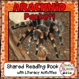 Spiders Non-fiction Unit for K -1