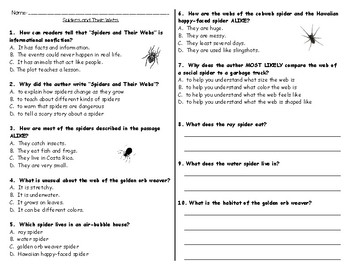Spiders and Their Webs Storytown  Assessment