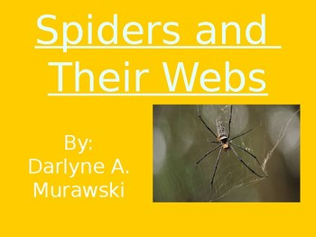 Spiders and their Webs - Vocabulary