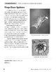 Spiders in the Food Web (Reading Paired Text)