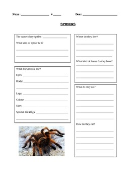 Spiders research
