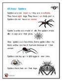 Spiders worksheet