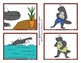 Spike & Pals Flash Cards - Sequences