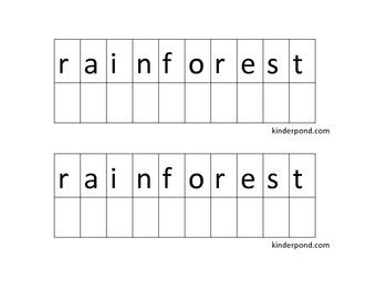 Spinner- Rain Forest