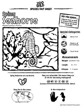 Spiny Seahorse -- 10 Resources -- Coloring Pages, Reading & Activities