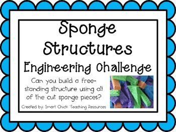 Sponge Structures: Engineering Challenge Project ~ Great STEM Activity!