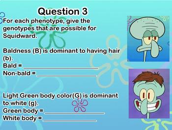 Spongebob Genetics