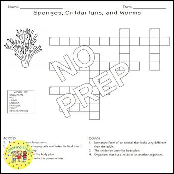 Sponges Cnidarians Worms Science Crossword Puzzle Worksheet Middle School