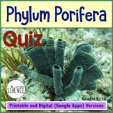Sponges - Phylum Porifera - Quiz or Review