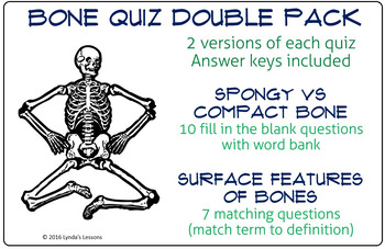 Bone Quiz double pack- Spongy vs Compact Bone; Surface Features of Bones; 2 ver