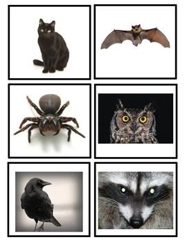 Spooky Animal Flash Cards