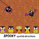 Spooky Spatial Directions