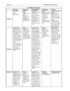 Sport Education Model: Badminton