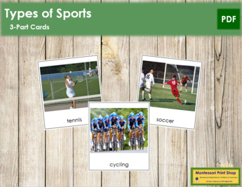 Sports: 3-Part Cards