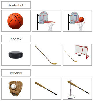 Sports and Equipment Sorting Cards