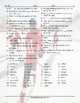Sports and Exercise Spanish Word Search Worksheet