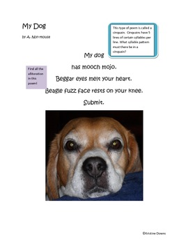 Spotlight Poems for Enriched Student Learning - My Dog - a Cinquain