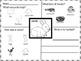 Spotlight on animals - animal mats