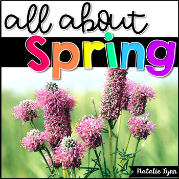 All About Spring