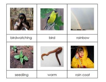Spring 3-Part Montessori / Vocabulary Cards