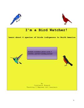 Spring Activities: Bird Watching for Beginners
