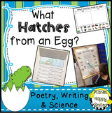 Oviparous Animals, What Hatches from an Egg, Poetry, Writing and Science