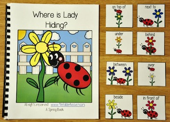 Spring Adapted Book:  Where is Lady Hiding?