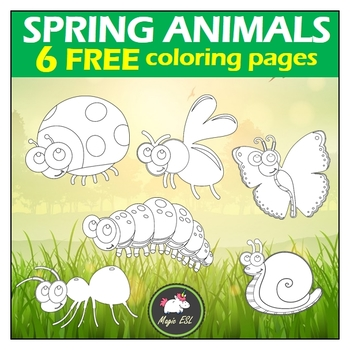 Spring Animals Coloring Pages