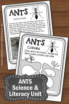 Ants Activities, Life Cycles Science Emergency Sub Plans, Insect Unit
