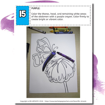 Spring Art Project, Butterfly on a Flower