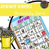 Spring Vocabulary Bingo