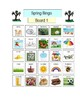 Spring Bingo - 5 Boards - visuals with word list and picture supports