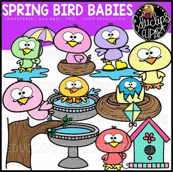 Spring Bird Babies Clip Art Bundle {Educlips Clipart}