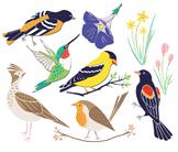 Spring Birds, Bird Clip Art, Spring ClipArt, Spring Bird Clip Art