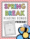 Spring Break Reading Bingo Freebie