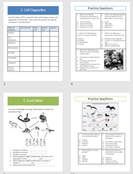 Spring Break Review Packet - life science topics + test practice