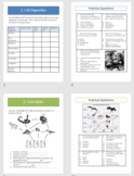 Life Science Review Packet - 6 topics worksheets, graphic organizers, & MC