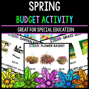 Spring Budget - Special Education - Shopping - Life Skills - Money - Math