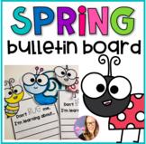 Spring Bulletin Board - Bug Theme