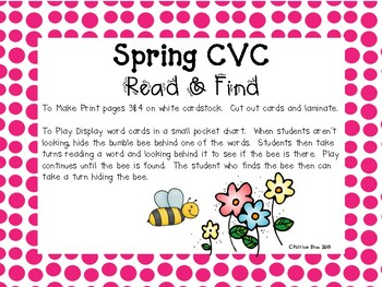 Spring Flowers CVC Read and Find Game