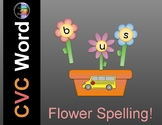 Spring CVC Word -  May Flowers Spelling Activity