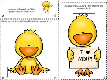 Spring Chick Measurement Scoot: 3 sets (inch, 1/2 inch, 1/4 inch)