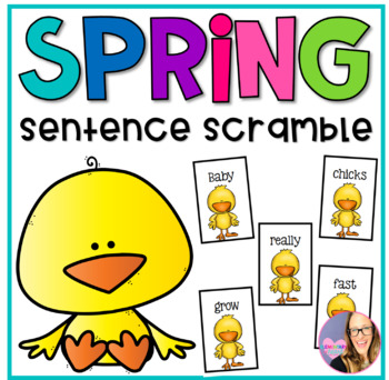 Spring Chicks Sentence Scramble