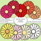 Spring Clipart - Daisies