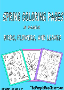 Spring Coloring Pages Set #2