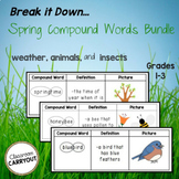 Spring Compound Words BUNDLE: Weather, Insects, and Animals!