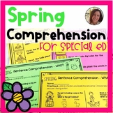 Spring Comprehension for Special Ed | Special Education an