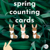 Spring Counting Cards- Interactive Math Activity for Students with Autism