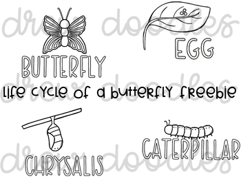 Life Cycle of a Butterfly Digital Clip Art Set
